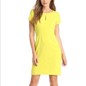 BCBG Chole dress in dark lime